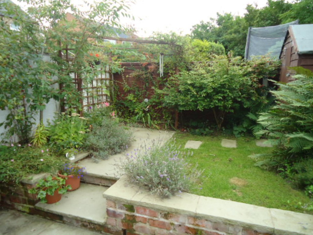 3 Bedroom Cottage House To Rent - Image 15