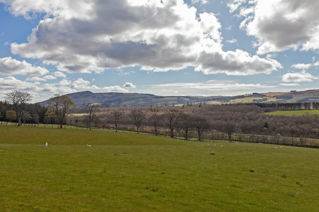 Hunters Meadow, Auchterarder
