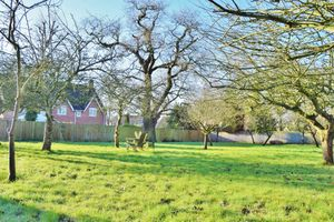 The Orchard, Broome Manor Lane