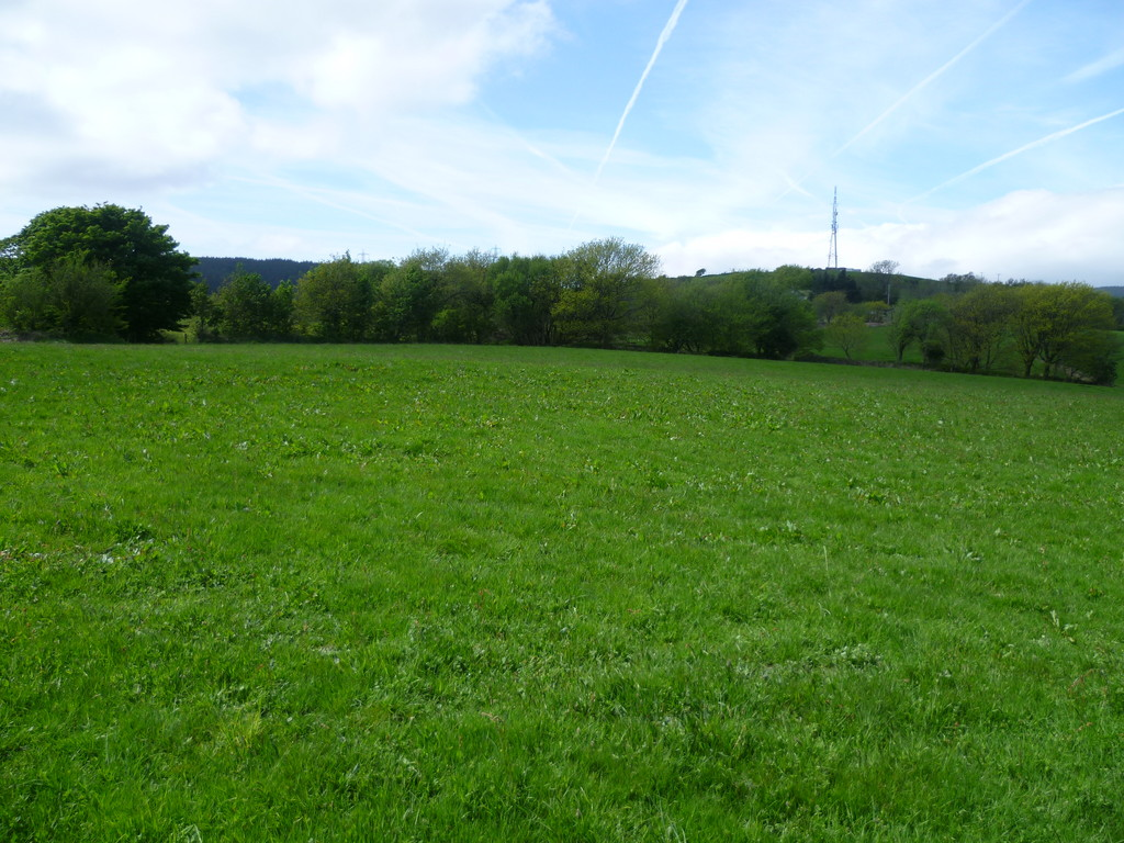 Approx 12.19 acres of permanent pasture land at Brynmawr Farm, Maesteg