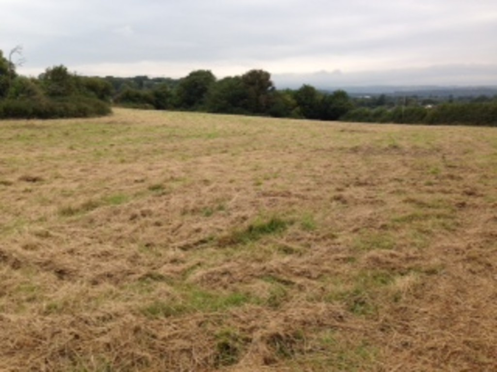 Approx. 2.89 acres of land off Llanmihangel Road, Llanblethian, Cowbridge, Vale Of Glamorgan, CF71 7