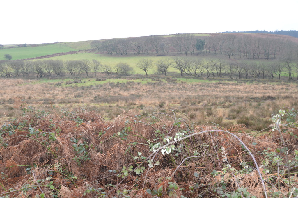 Approx. 17.89 acres of Land at Penycastell Farm, Bryn, Port Talbot, SA13 2PY