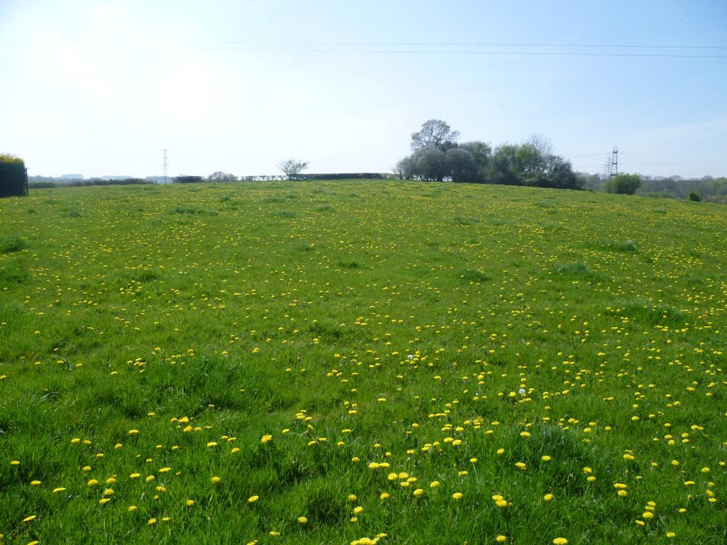 Approximately 5.11 acres of land part of Tydu Farm, Llanharry, Pontyclun, CF72 9GA