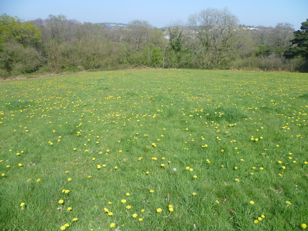Approximately 2.83 acres of land part of Tydu Farm, Llanharry, Pontyclun, CF72 9GA
