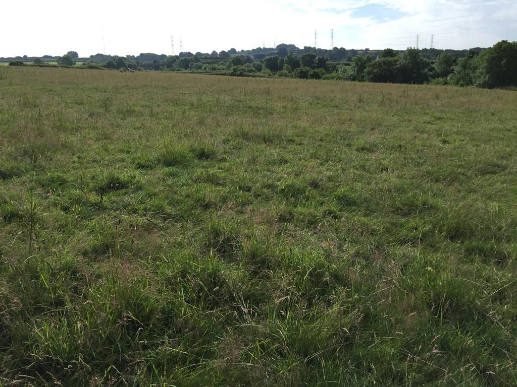 Approximately 29.38 acres of Land at Aberthin Lane, Cowbridge, Vale of Glamorgan, CF71 7LD