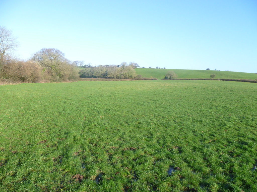 Lot 17 Approximately 20.46 acres of Land, Michaelston Le Pit, Near Dinas Powys, CF64 4HP