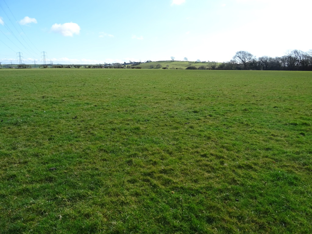For Sale: Approximately 26.13 Acres Of Permanent Pasture In 2 Enclosures, St Mary Church, Cowbridge