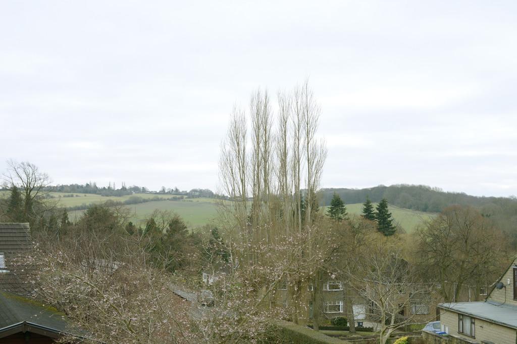 Langer Lane, Wingerworth