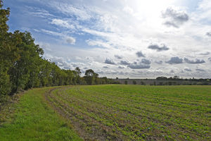 Monk Soham, Near Framlingham, Suffolk property photo