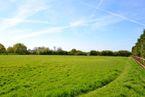 Chantry Lane, Boreham