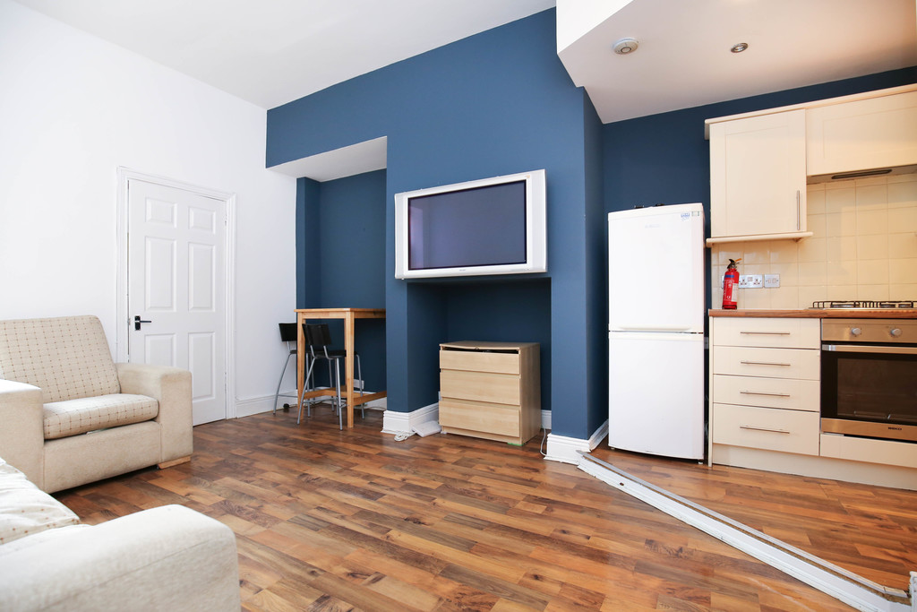 3 bedroomstudent                ground floor flat               for rent in sandyford