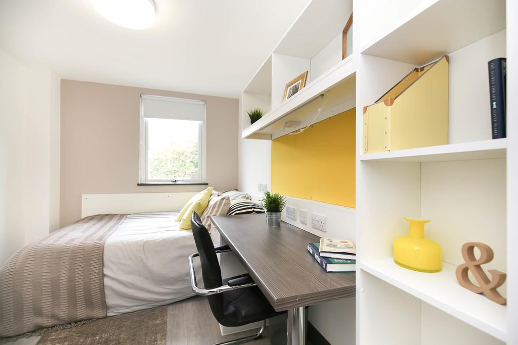shared flatstudent                               for rent in albert street