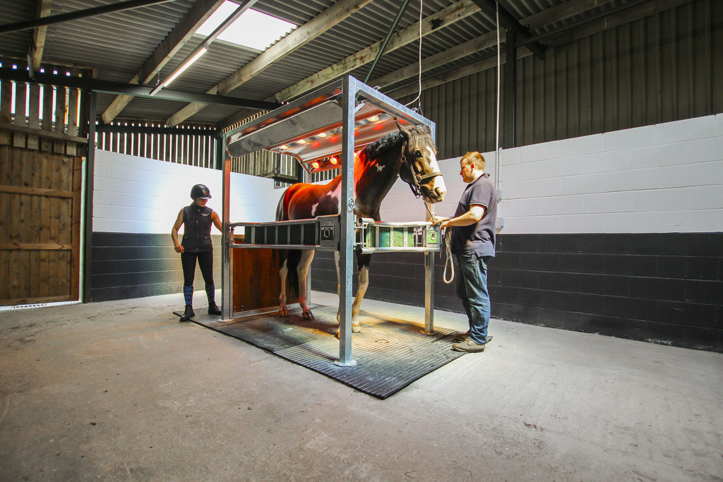 Equestrian To Rent - Image 25