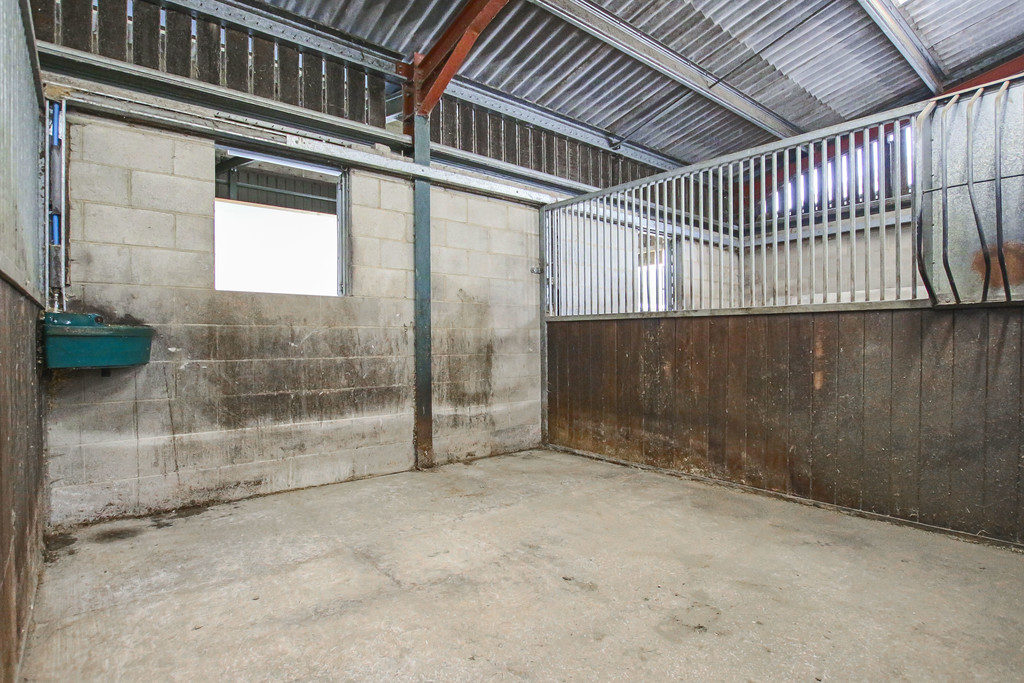 Equestrian To Rent - Image 14