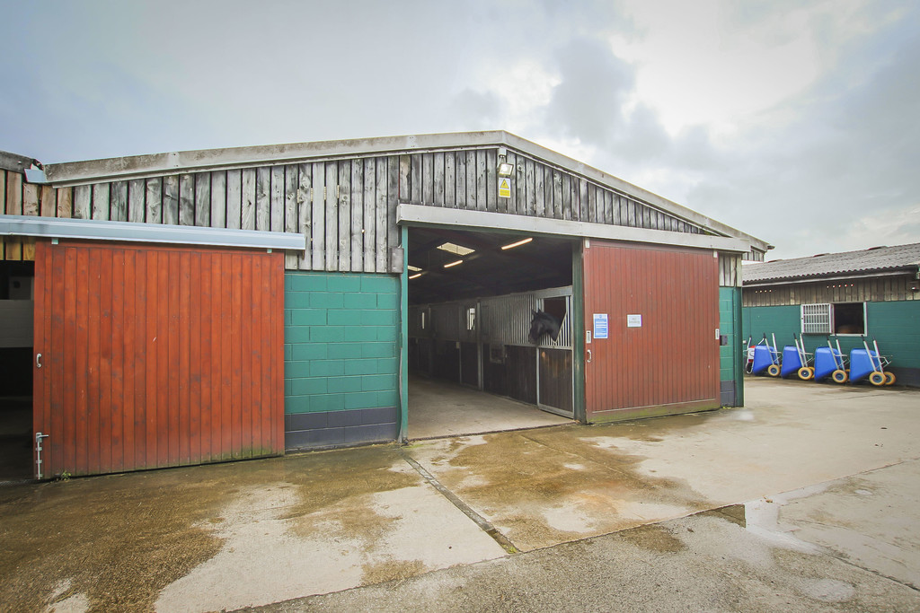 Equestrian To Rent - Image 27