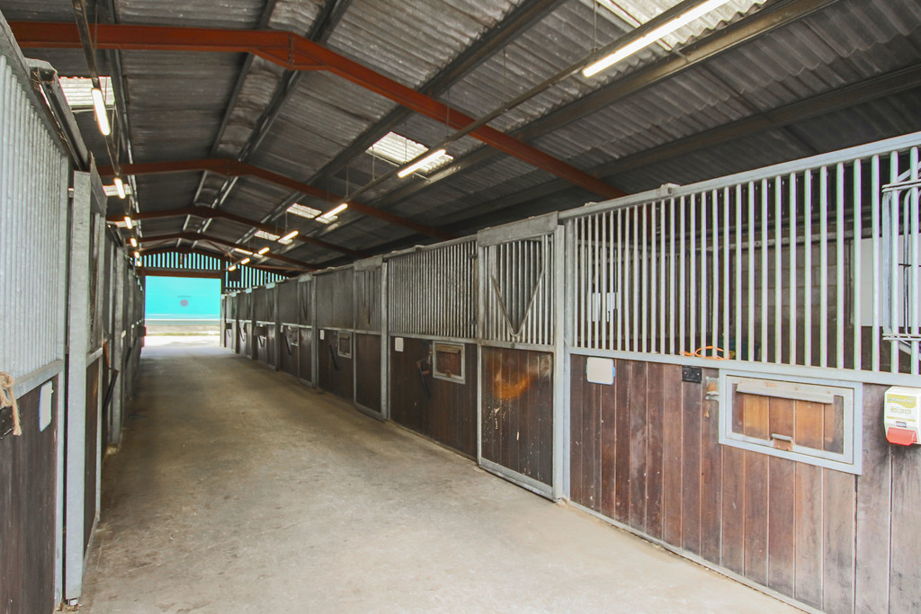 Equestrian To Rent - Image 17