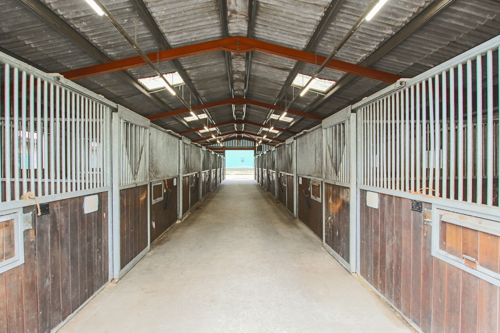 Equestrian To Rent - Image 15