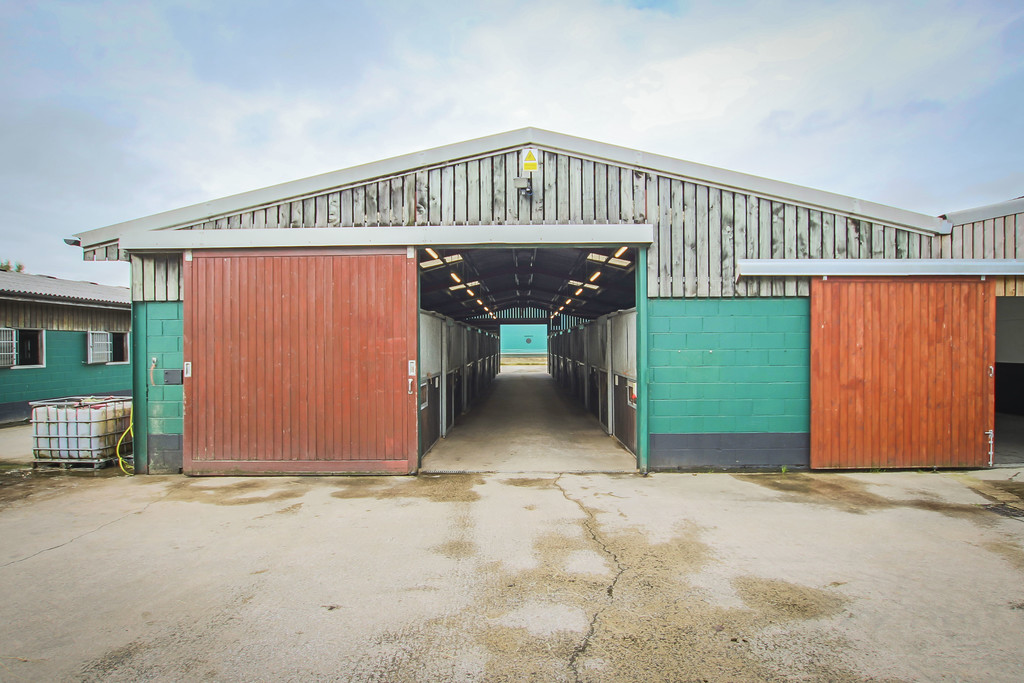 Equestrian To Rent - Image 18