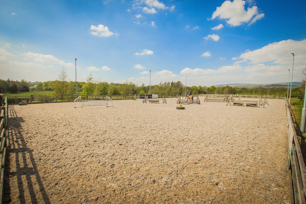 Equestrian To Rent - Image 34