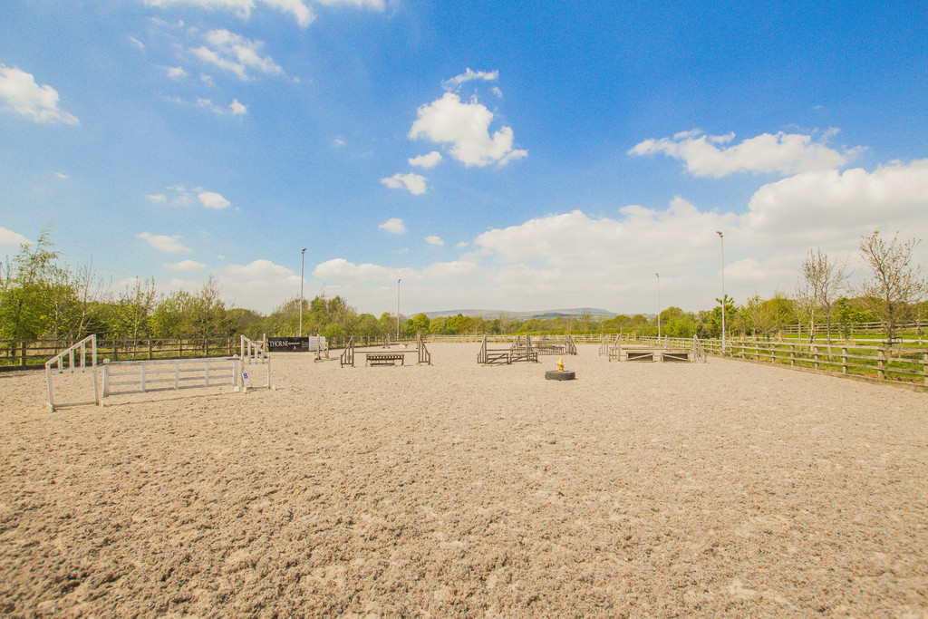 Equestrian To Rent - Image 19