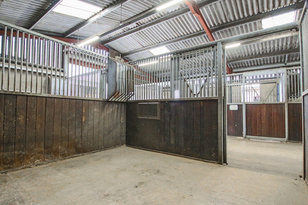 Equestrian To Rent - Image 7