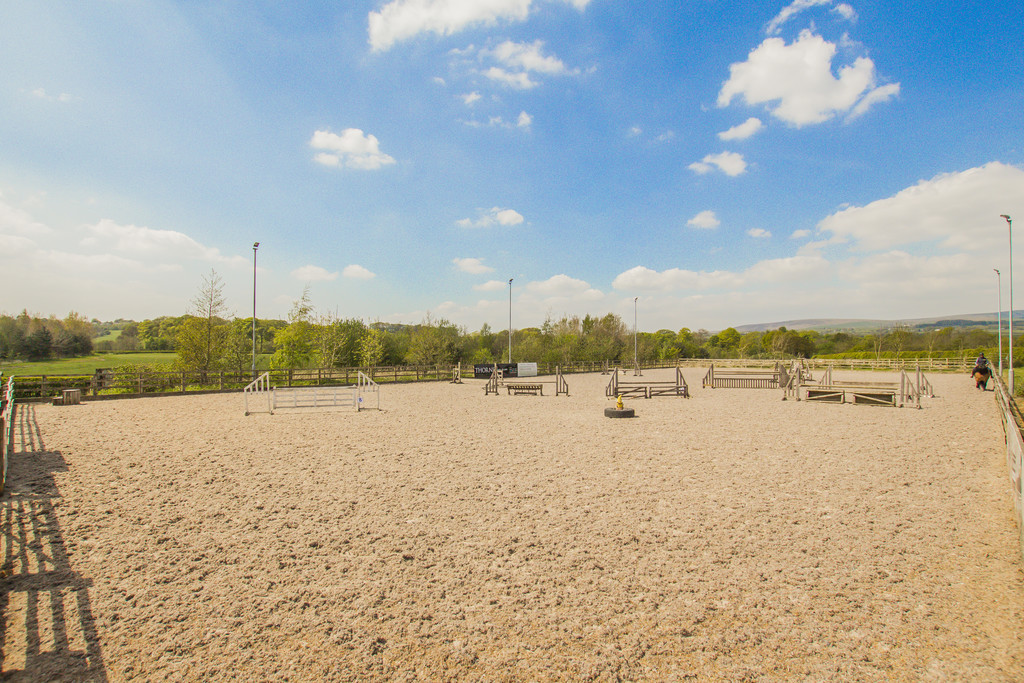 Equestrian To Rent - Image 21