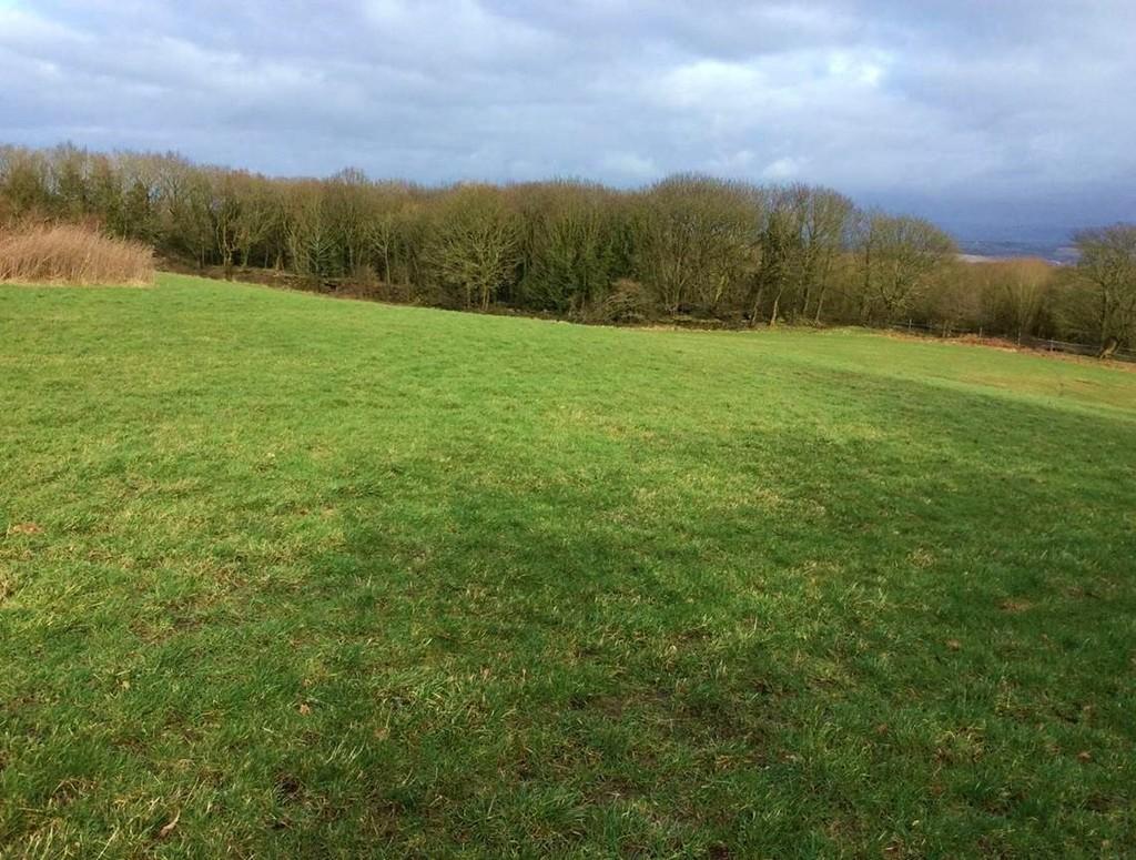 Belle Vue Farm