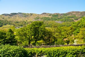7 Fir Garth, Chapel Stile, Ambleside, Cumbria, LA22 9JW