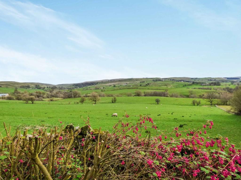 Littlethwaite, North Stainmore - 0