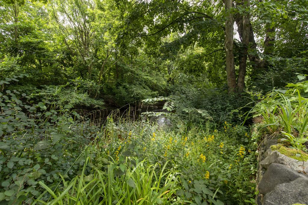 15 Holme Park, Bentham - 0