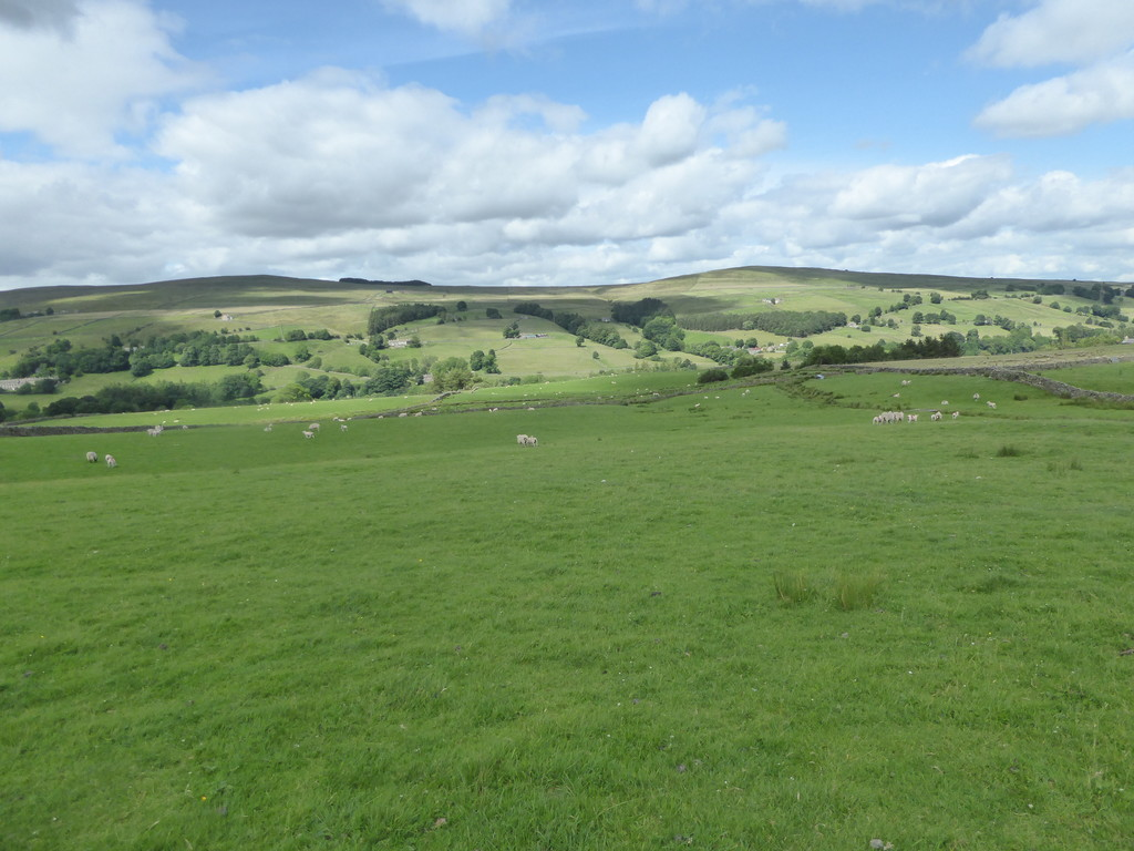 Land at High Rowantree Farm, St Johns Chapel