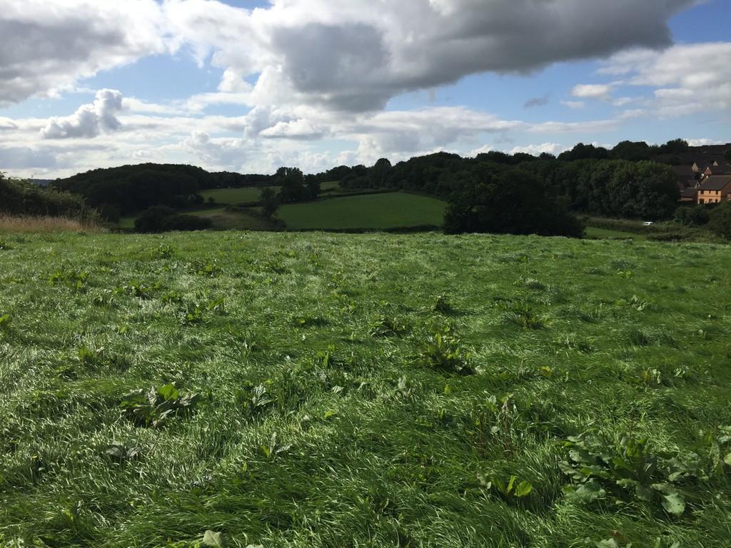 Approximately 10.09 Acres of Land, Heol Simonston, Coity, Bridgend, CF35 6BE