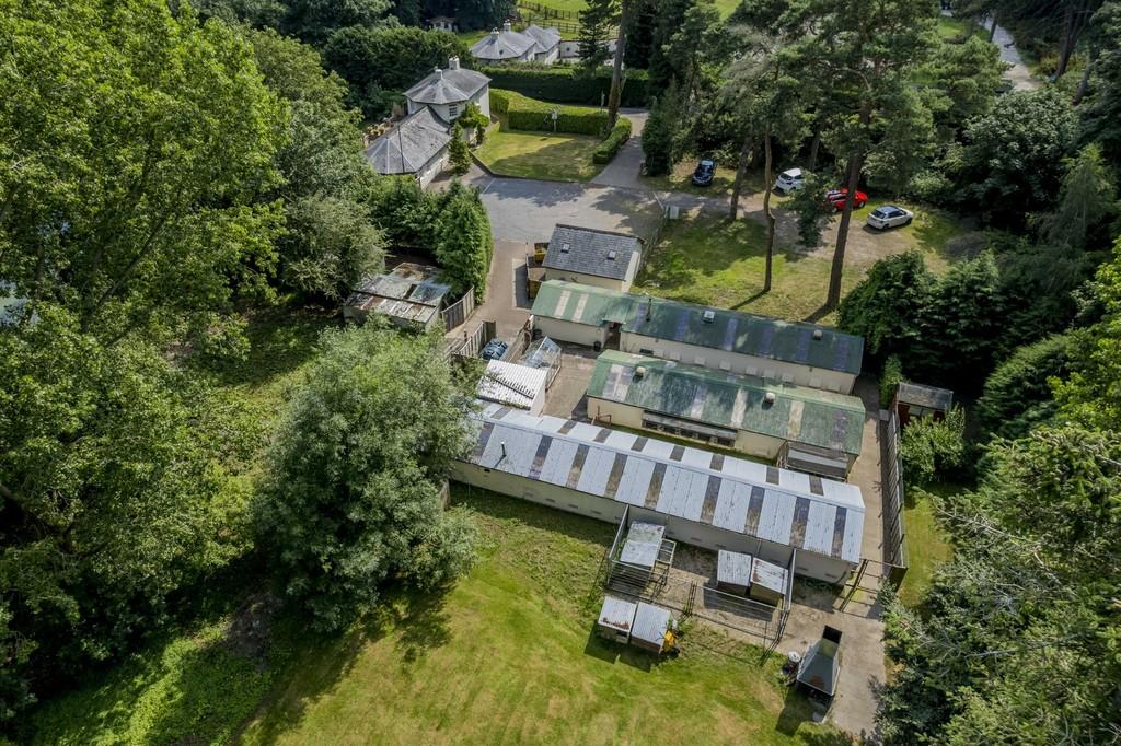 Property Image 41