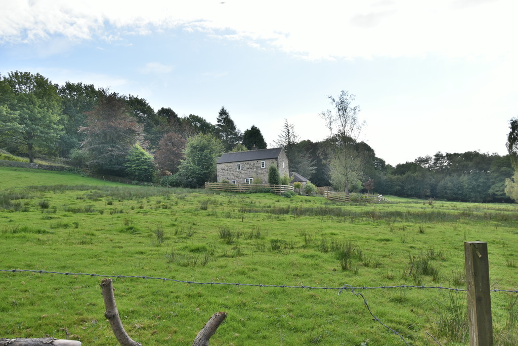 Property Image 63